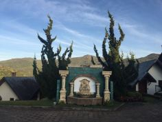 Monte Verde 14