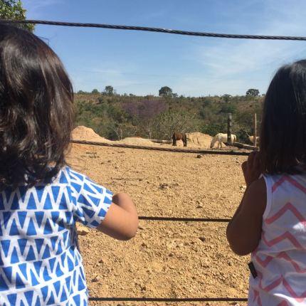 Rancho dos canarios3