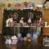 Festa de Aniversário infantil com Dois Temas: tivemos!